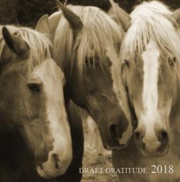 2018 Draft Gatitude Calendar Cover