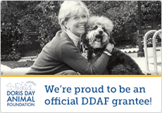Draft Gratitude is Proud to be an offical DDAF grantee!