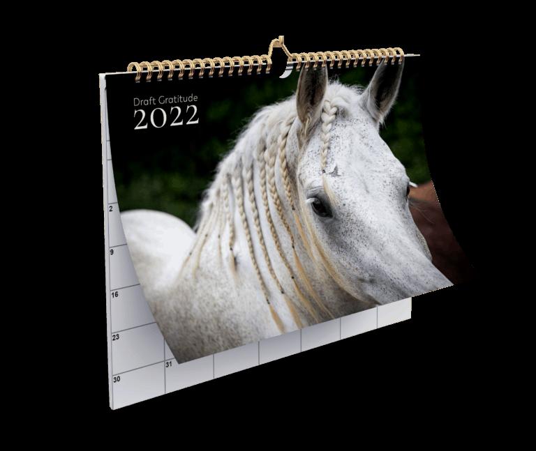 Draft Gratitude Filler Calendar for 2022